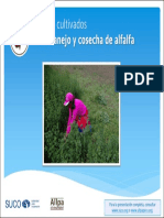 P6 - Presentacion