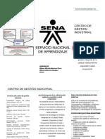 Folleto Sena PDF