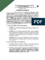 Convenio Institucion Educativa Superior Tecnologico Constitucion - 2018.doc
