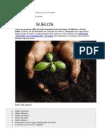 Tipos de Suelo de Uso Para El Plantación
