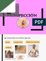 inspeccion presentacion