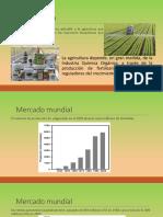 Agroquimicosfinal.pptx