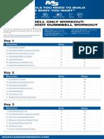 Dumbbell fullbody.pdf