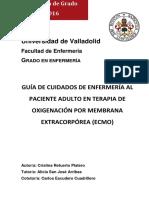 Protocolo ECMO Valladolid.pdf