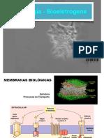 2 _bioeletrogenese.key.pdf