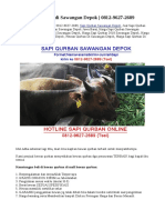 Jual Sapi Qurban di Sawangan Depok   0812-9627-2689