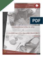 CONSERVACION EN ARQUEOLOGIA