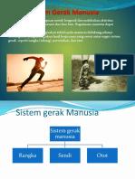 Sistem Gerak Manusia.pptx