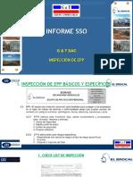 Informe SSO Inspeccion de EPP