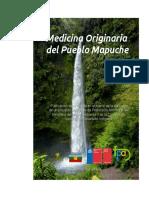 Medicina originaria del pueblo Mapuche
