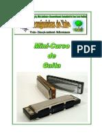 mini_curso_gaita.pdf