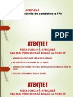 PPA Procedura Organizare