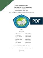SATUAN ACARA PENYULUHAN 6.docx