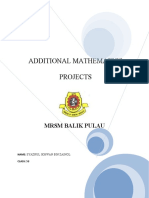 Addmath Project 2009
