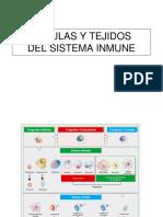 Celulas y Tejidos Del SI