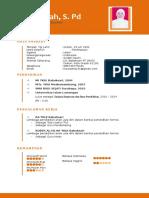 contoh fomat CV.docx