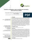 Artículo Análisis Comparativo de la Torrefacción Húmeda y Seca de Pinus Radiata.pdf