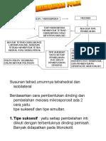 pertum 2