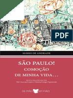 São Paulo Comoção de Minha Vida