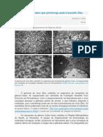 Fiocruz.pdf
