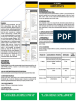 Acc Mortal 1.2, Pallancata- Panel (5)