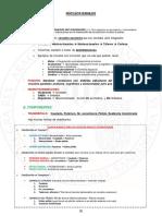 Núcleos basales.pdf