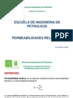 PERMEABILIDADES RELATIVAS.pdf
