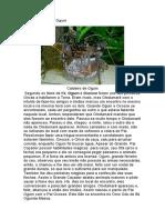 134328995-Assentamento-de-Ogum-Otas.pdf