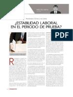 Estabilidad Laboral en Etapa de Prueba_Nov2015-3.pdf