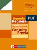 AgendaRegionalparalaimplementaciondelaconsultaprevia (1)