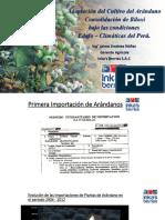 Jaime Jimenez.pdf
