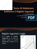 3.2 CANAL INGUINAL Y PERITONEO.pptx