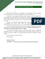 aula2_dir_admin_TE_TEC_INSS_Organização da Adm Púb.pdf