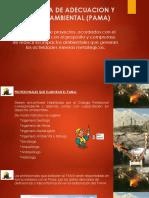 PROGRAMA DE ADECUACION Y MANEJO AMBIENTAL (PAMA.pptx