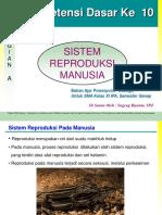 Presentasi Sistem Reproduksi Manusia