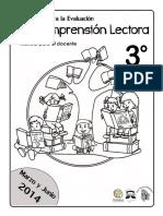 Docente_comprension_lectora_TERCERO.pdf