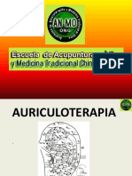 Puntos maestros.pdf