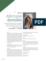 Revista Salud+ Shih tzu