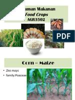 Module 7 Maize - Intro