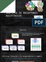 Subtipos de Receptores Nicotínicos