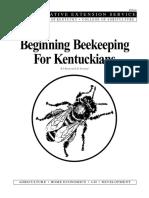 Beginners Bees