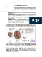 Cholesterol Span