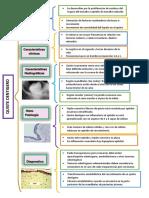 patologia cuadrosinoptico