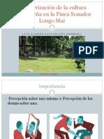 Caracterización de La Cultura Salvadoreña en La Finca