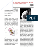 Buccal+fat+pad+flap-1.pdf