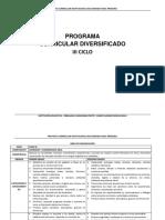 Diseño Curricular Diversificado- III Ciclo Primaria Avp