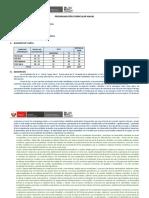 Programación Curricular Anual (Estructura)
