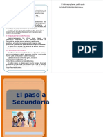 Folleto Paso Secundaria