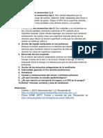Función de Los Neumocitos I y II