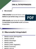 Tema2 Mediul Extern Al Intreprinderii